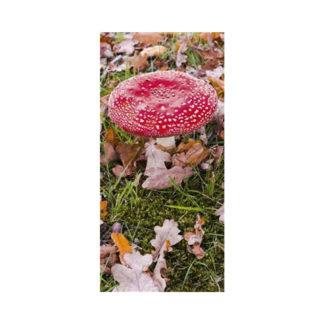 poster-mushroom