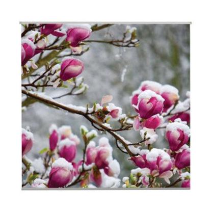 poster-rosalie