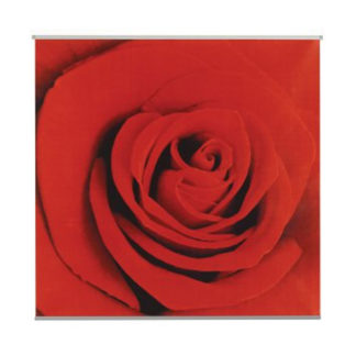 poster-scarlet